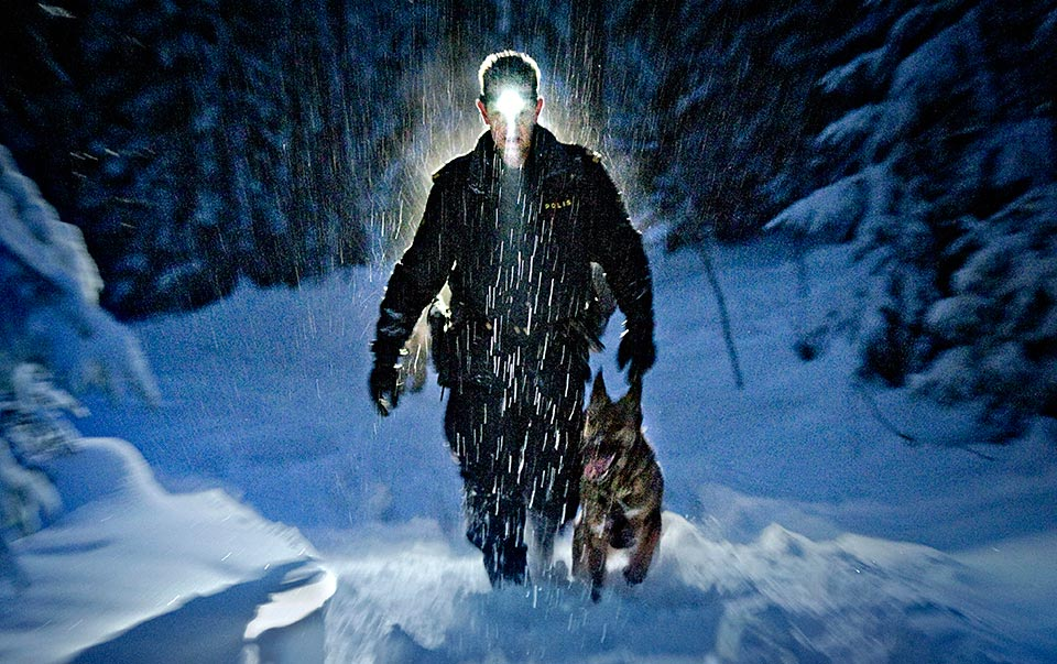 Sökande i Klockhammarskogarna efter en försvunnen kvinna.